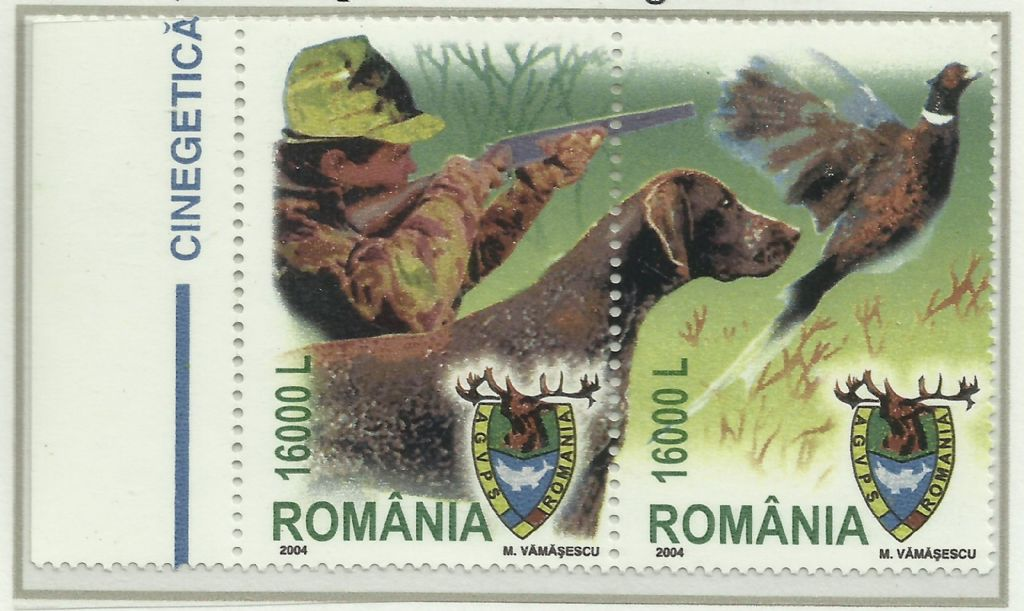 romania.shootingpheasant.jpg