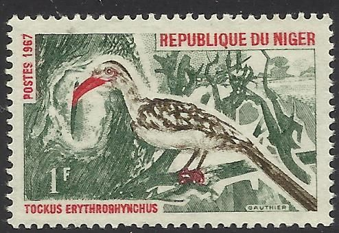 niger.1967.1f red billed hornbill.jpg