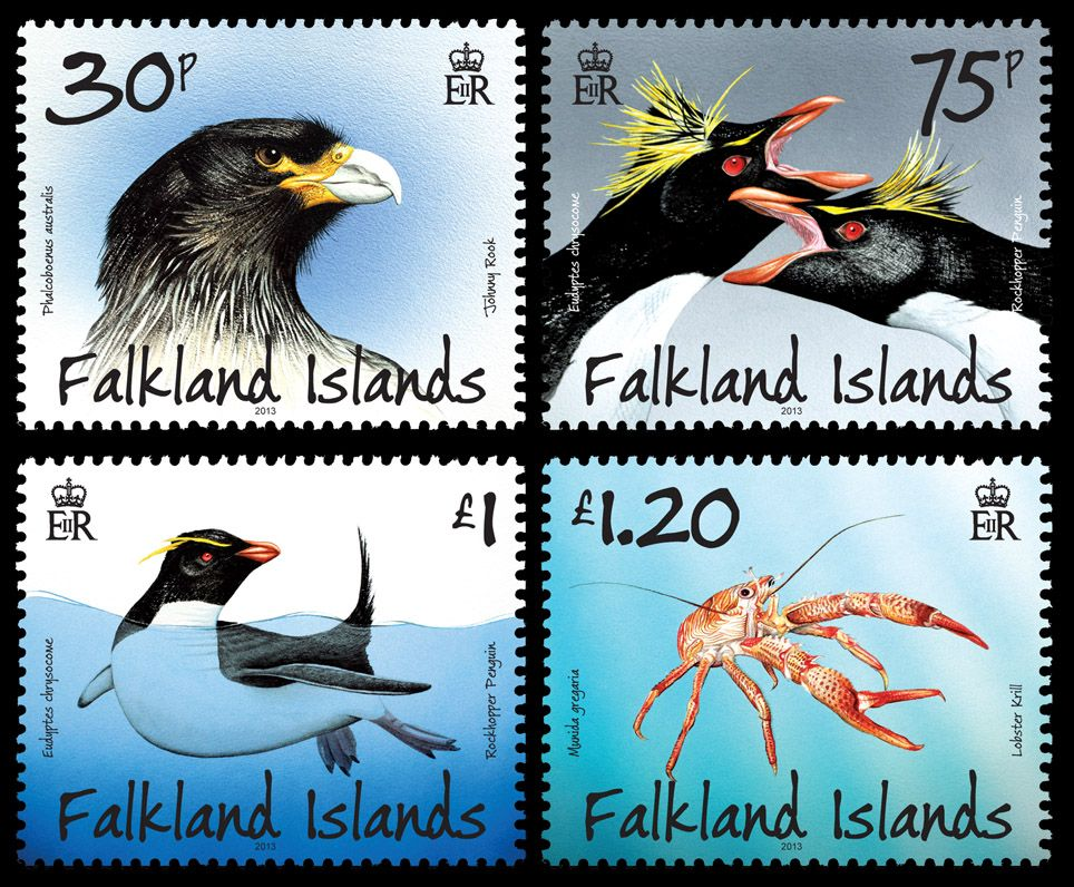 falkland islands predators 2.jpg