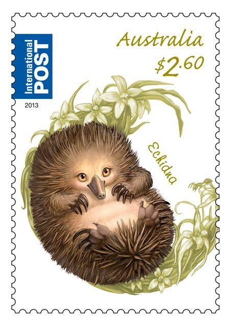 $2.60-echidna_bush-babies-ii_2013_low-res.jpg